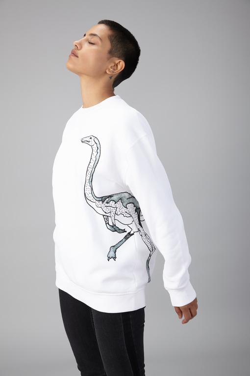hybrid dino sweatshirt